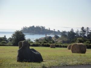 orcas island edge