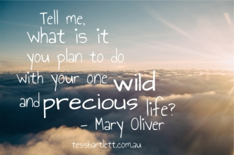 Mary Oliver-one wild and precious life quote